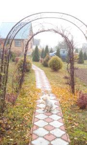 Дорожка садовая